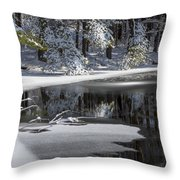 Winter Fresh Throw Pillow