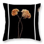 Winter Garden Triptych Throw Pillow