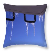 Winter Gives Way To Spring Throw Pillow