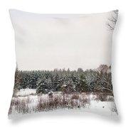 Winter Glade Under Snow. Throw Pillow