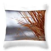 Winter Grass - 2 Throw Pillow