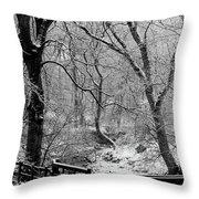 Winter, Ham Burn, Whitley Mill Throw Pillow
