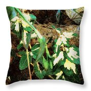 Winter Hideout Throw Pillow