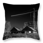 Winter Homes The Crane And The Great Plough Throw Pillow