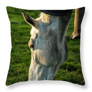 Winter Horse 3 Throw Pillow