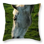Winter Horse 4 Throw Pillow