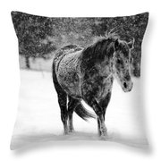 Winter Horse Throw Pillow by Mark Courage
