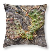 Winter Hunger Quenched Throw Pillow