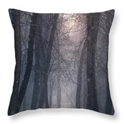 Winter Hush Throw Pillow