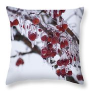 Winter Ice Berries Throw Pillow