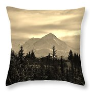 Winter In Black N White Throw Pillow