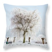 Winter In Holland Throw Pillow