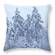 Winter In Maine 2017 Throw Pillow