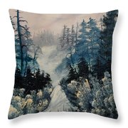Winter In New Jersey Throw Pillow