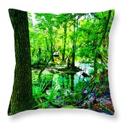 Winter In Paradise Throw Pillow