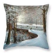 Winter In Pavlovsk Park Throw Pillow