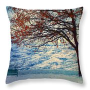 Winter In Peachland Throw Pillow