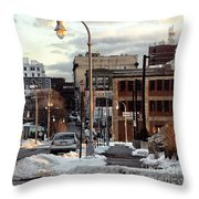 Winter In Portland Throw Pillow