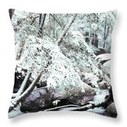Winter In Shenandoah Throw Pillow by Thomas R Fletcher