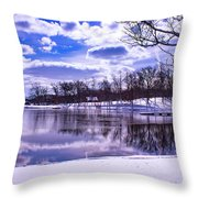 Winter In The Park Throw Pillow
