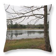 Winter In The Spring Throw Pillow