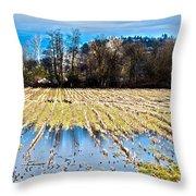 Winter In Washington Fields Throw Pillow