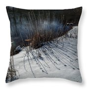 Winter Lake View Throw Pillow