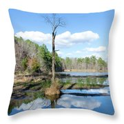 Winter Lake View Throw Pillow by George Randy Bass
