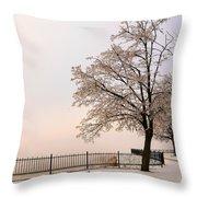 Winter Landscape 1 Throw Pillow