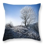 Winter Landscape Of Trees Covered With Frost Throw Pillow