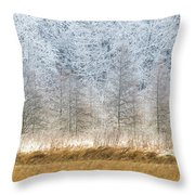 Winter Layers Throw Pillow