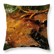 Winter Leaves In Ice Throw Pillow