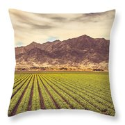 Winter Lettuce Throw Pillow
