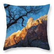 winter Light 2 Throw Pillow