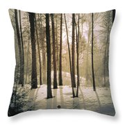 Winter Light Throw Pillow