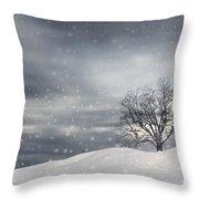 Winter Throw Pillow by Lourry Legarde