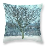 Winter Mimosa Painterly Throw Pillow