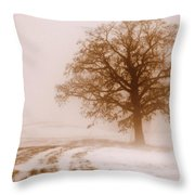 Winter Mist Throw Pillow