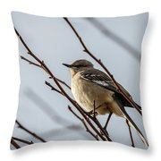 Winter Mockingbird Throw Pillow