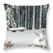 Winter Moments In Harz Mountains Throw Pillow