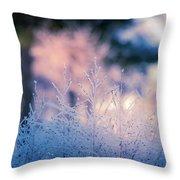 Winter Morning Light Throw Pillow