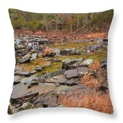Winter Morning On Marble Creek 1 Throw Pillow