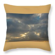 Winter Morning Scape Throw Pillow