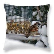 Winter Mornings Throw Pillow