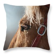 Winter Mustang Eye Throw Pillow