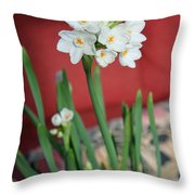 Winter Narcissus II Throw Pillow