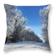 Winter On 210th St. Throw Pillow