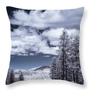 Winter On 89a Throw Pillow
