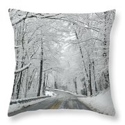 Winter On Buffalo Road Throw Pillow