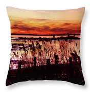 Winter On The Bay Throw Pillow